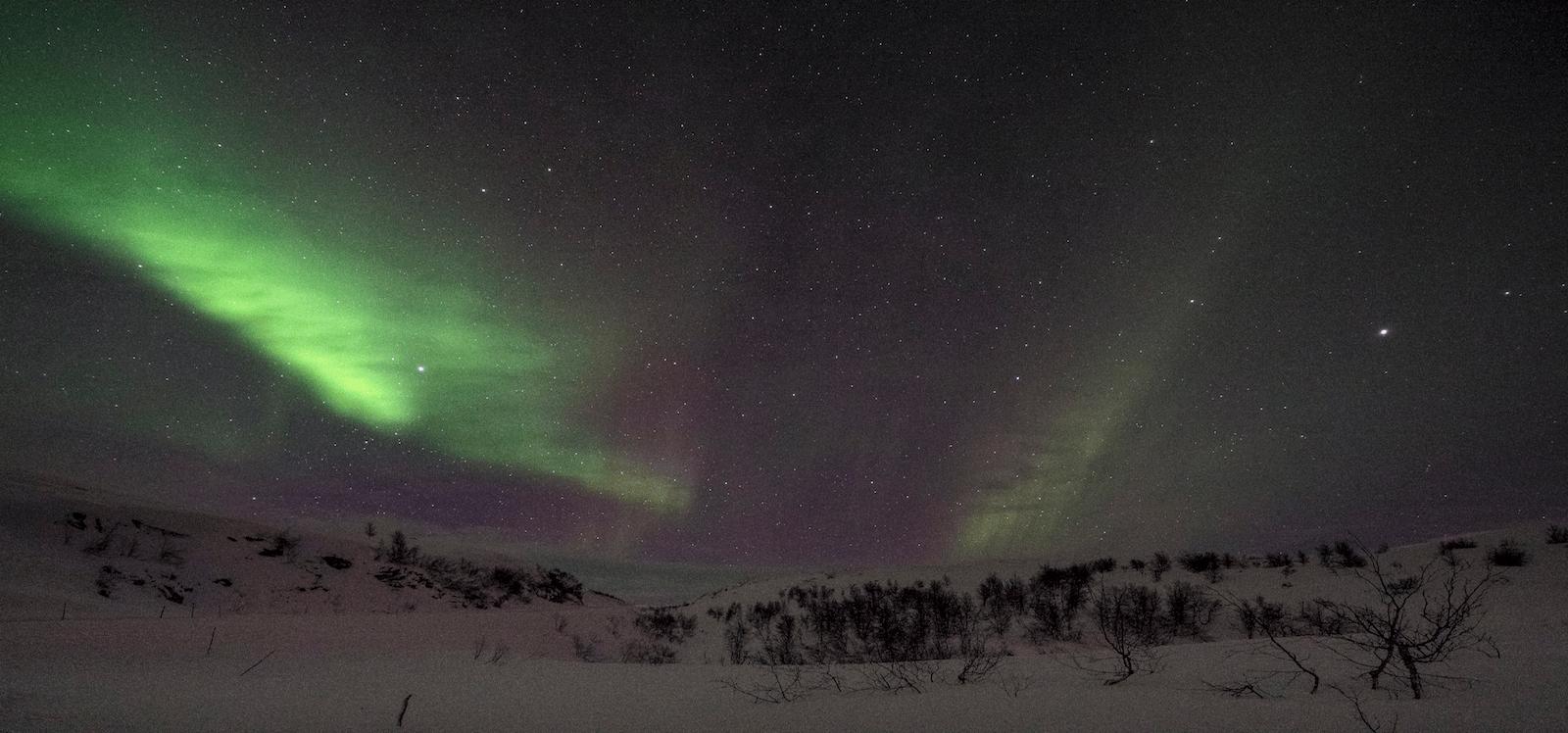 Nordlichter über Schneelandschaft